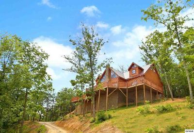 Sevierville Single Family Home For Sale: 904 Autumn Ridge Way
