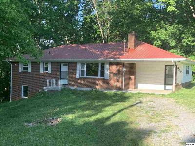 Dandridge Single Family Home For Sale: 989 Burchfield Rd