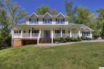 Sevierville Single Family Home For Sale: 4040 Roundtop Drive