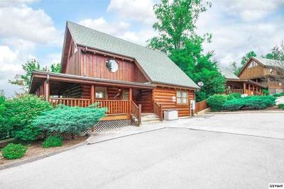 Sevierville Single Family Home For Sale: 1951 Cougar Crossing Way
