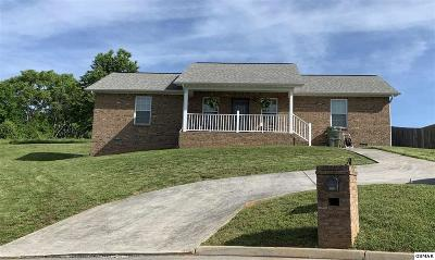 Sevierville Single Family Home For Sale: 1516 Cloverdale Ct