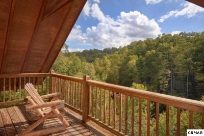 Sevierville Single Family Home For Sale: 2137 Beach Front Dr