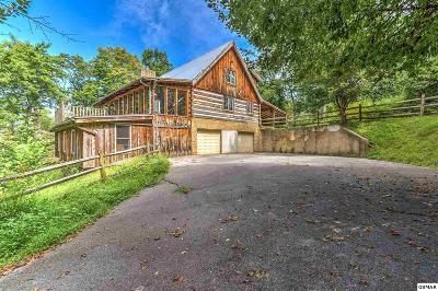 Gatlinburg Single Family Home For Sale: 302 Beech Branch Rd