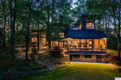 Gatlinburg Single Family Home For Sale: 673 Buckhorn Rd