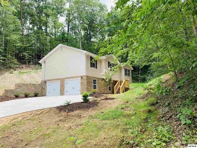 Pigeon Forge Single Family Home For Sale: 3325 Mr. Marshall Dr.