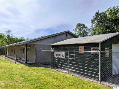 Sevier County Commercial For Sale: 1723 Bluff Mountain Rd