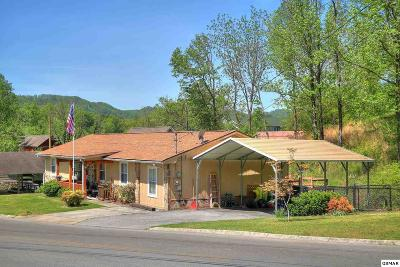 Pigeon Forge Single Family Home For Sale: 307 Day Springs Rd.