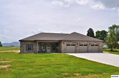 Seymour Single Family Home For Sale: 509 Carpenter Drive