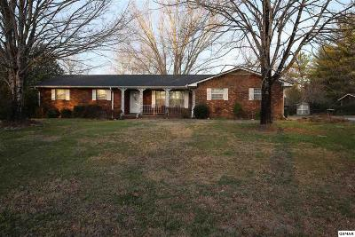 Sevierville Single Family Home For Sale: 308 Poplar St