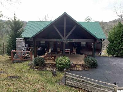 Sevierville Single Family Home For Sale: 2214 Dogwood Cove Way