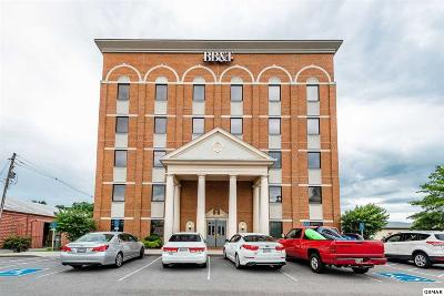 Sevier County Commercial For Sale: 100 East Main Street