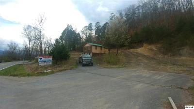 Sevierville Single Family Home For Sale: 2560 Wears Valley Rd