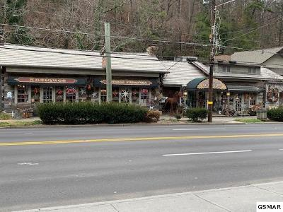 Sevier County Commercial For Sale: 373 Parkway