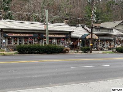Gatlinburg Commercial For Sale: 373 Parkway