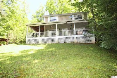 Sevierville Single Family Home For Sale: 2133 Duck Pond Ln