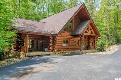 Gatlinburg Single Family Home For Sale: 640 Pinnacle Vista
