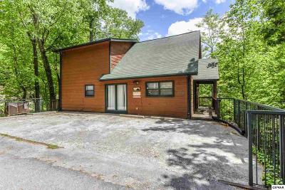 Gatlinburg Single Family Home For Sale: 1069 Lower Alpine Way