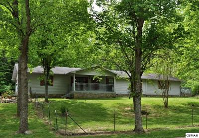 Sevierville Single Family Home For Sale: 430 Lane Hollow Road
