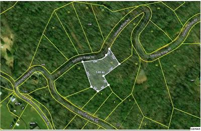 Residential Lots & Land For Sale: Sonshine Ridge Rd. Lot 13
