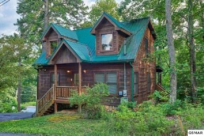 Sevierville Single Family Home For Sale: 1517 Ginnys Trail