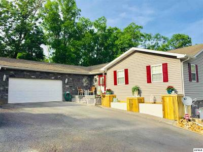 Sevierville Single Family Home For Sale: 270 Amolee Ln