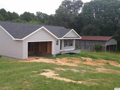 Sevierville Single Family Home For Sale: 1413 Snapp Rd