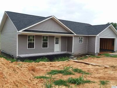 Sevierville Single Family Home For Sale: 1403 Snapp Rd