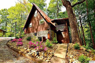 Gatlinburg Single Family Home For Sale: 1235 N Baden Drive
