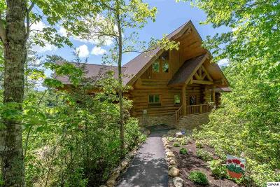 Gatlinburg Single Family Home For Sale: 618 Big Bear Ridge Way