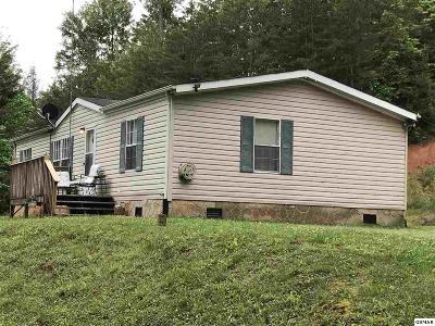 Sevierville Single Family Home For Sale: 1423 Honeysuckle Lane