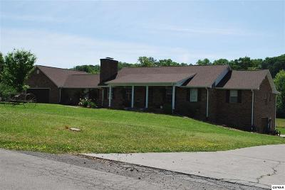 Blount County Single Family Home For Sale: 675 Baker St