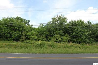 Sevier County Commercial For Sale: Boyds Creek Hwy