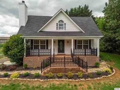 Dandridge Single Family Home For Sale: 980 Highway 139