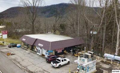 Cocke County Commercial For Sale: 4390 Cosby Hwy