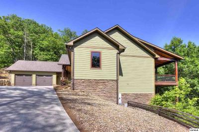 Townsend Single Family Home For Sale: 230 Low Gap Trail