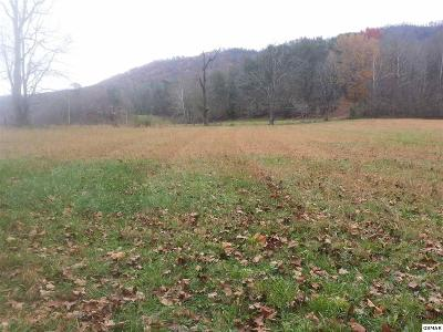 Sevier County Residential Lots & Land For Sale: P112 Waldens Creek Rd
