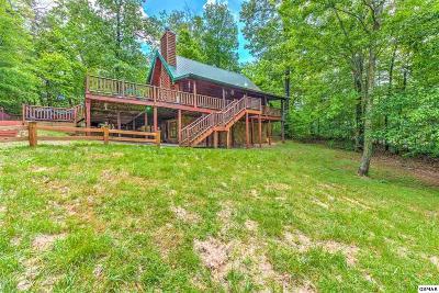 Sevierville Single Family Home For Sale: 1024 Elm Cir