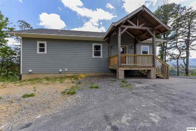 Sevier County Single Family Home For Sale: 1877 Blue Tick Way