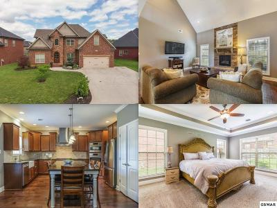 Knoxville Single Family Home For Sale: 2202 Muddy Creek Lane