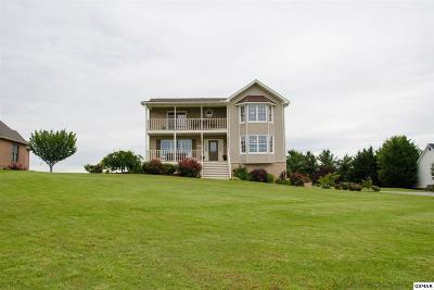 Dandridge Single Family Home For Sale: 1953 Lakebrook Cir