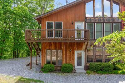 Sevierville Condo/Townhouse For Sale: 1070 Alpine Drive