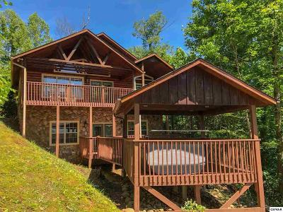 Sevierville Single Family Home For Sale: 5011 Riversong Way
