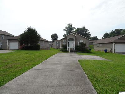 Sevierville Single Family Home For Sale: 1315 William Holt