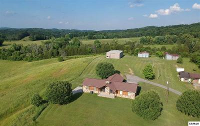 Kodak Single Family Home For Sale: 3982 Douglas Dam Road