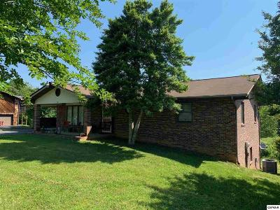 Sevierville Single Family Home For Sale: 464 Connatser Ln