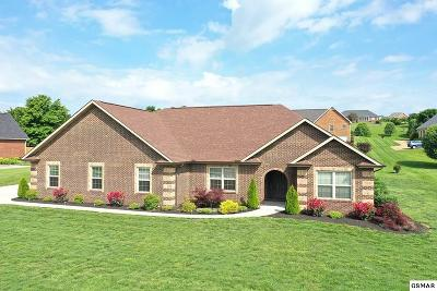 Sevier County Single Family Home For Sale: 1819 Alabama St