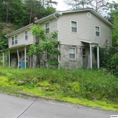 Sevierville Single Family Home For Sale: 3237 Lost Branch Road