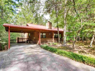 Sevierville Single Family Home For Sale: 3820 Saddle Brook Way