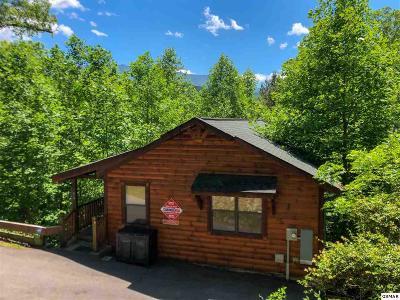 Gatlinburg Single Family Home For Sale: 416 Maples Rd
