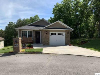 Sevierville Single Family Home For Sale: 2124 Covenant Dr